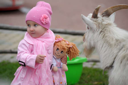 The little girl with a goat Stock Photo - 11038124