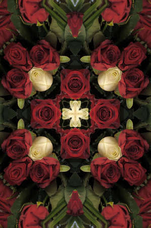 pattern of red and white roses photo