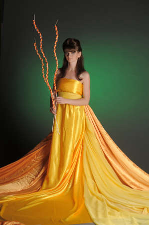 The beautiful young woman in a yellow dress photo