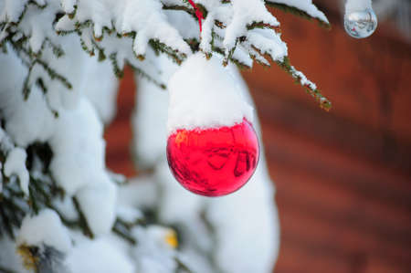 Christmas Ornament on Tree with Snow  photo