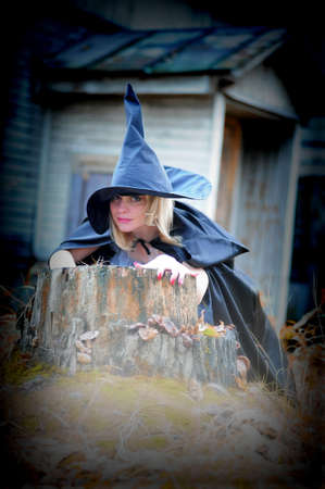 Witch in the hat Stock Photo - 13295538