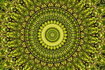 wholistic: green circular pattern mandala