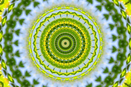 green circular pattern mandala Stock Photo - 12375800