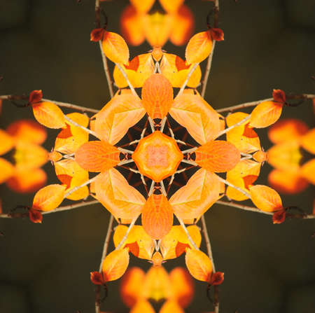 Kaleidoscope in pretty harvest colors of orange, yellow and red Stock Photo - 13255293