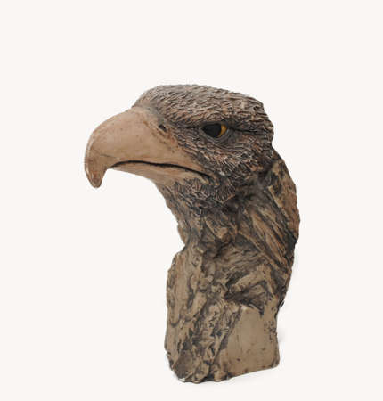 Head of an eagle Stock Photo - 13280013