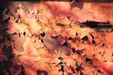 Grunge rusty metal texture  Stock Photo - 13444278