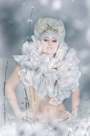 Snow queen Stock Photo - 13501108