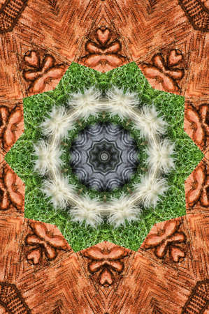 Brown with green circle pattern Stock Photo - 13734592