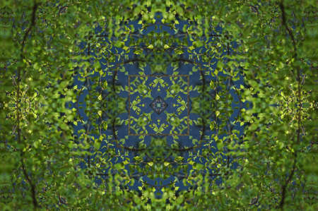 diffused: green ornament template