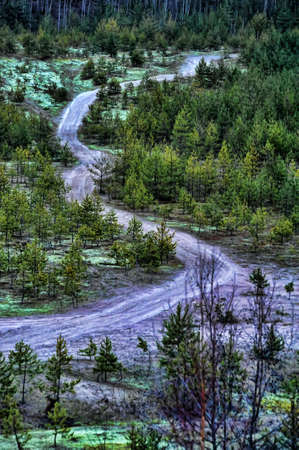 Twisting road to low wood Stock Photo - 14106936