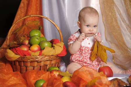 small child with a basket of apples photo