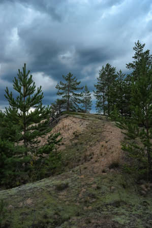 storm clouds over the forest photo