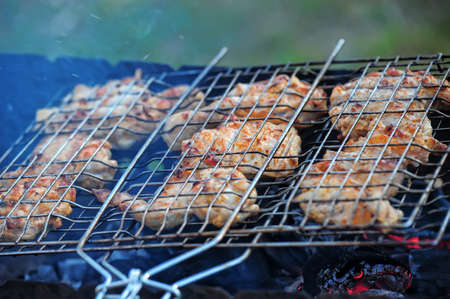 chicken skewers Stock Photo - 14234637