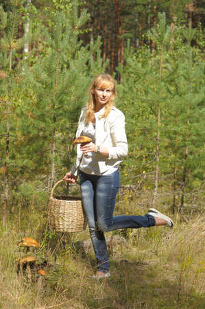 fungous: Woman gathers mushrooms in the basket Stock Photo
