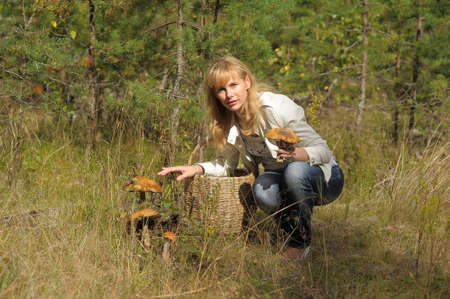 full willow: Woman gathers mushrooms in the basket Stock Photo
