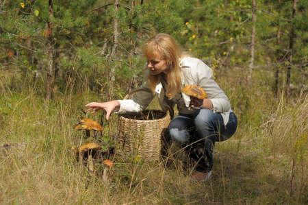 gathers: Donna raccoglie funghi nel cestino