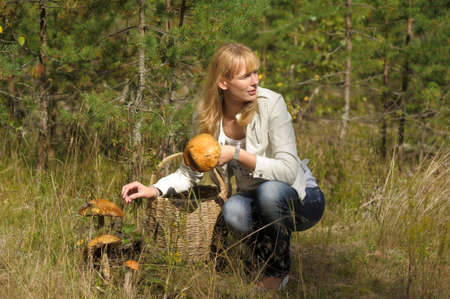 Woman gathers mushrooms in the basket photo
