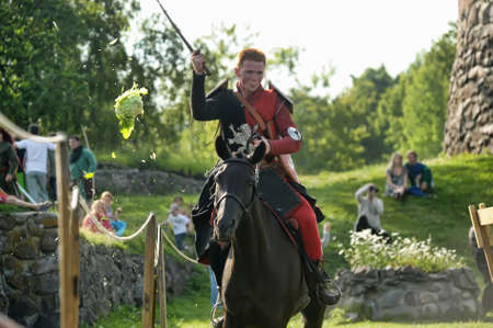 proponent: Festival of medieval knighthood  Russian fortress - 2012