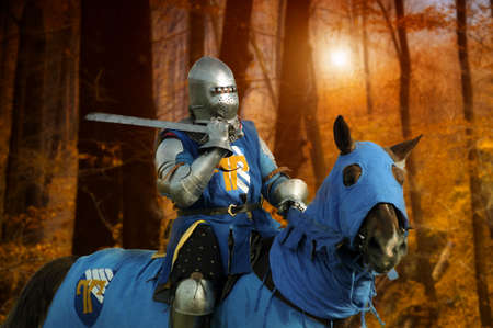 joust: Knight on horseback Editorial
