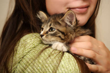 Teen girl with a kitty Stock Photo - 15231006