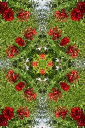 green with red roses decoration  photo
