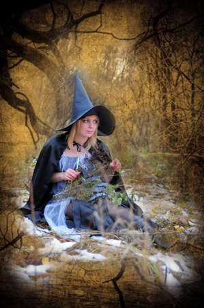 witch Stock Photo - 15144757