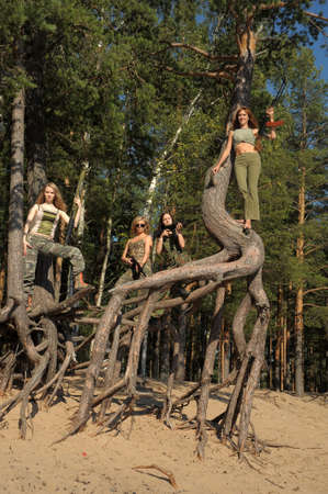 Four girls in armed ambush on a tree Stock Photo - 21997221