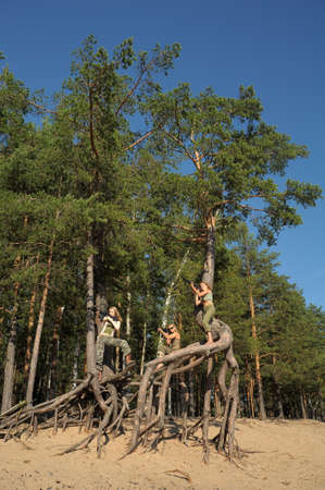 Four girls in armed ambush on a tree Stock Photo - 21997224