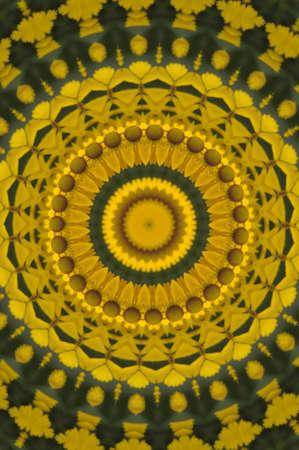 yellow-green circular pattern photo