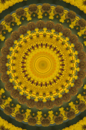 yellow-green circular pattern photo