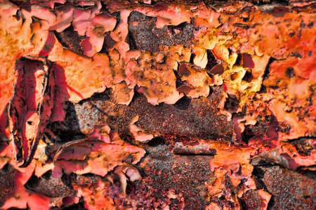 Grunge rusty metal texture Stock Photo - 15420468