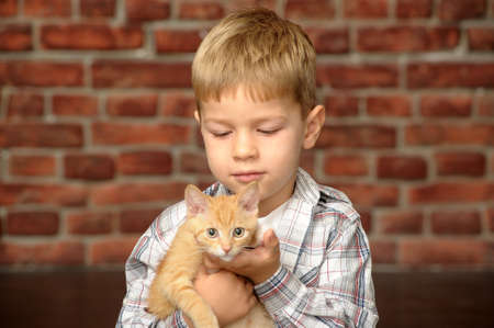 The little boy  with a fluffy kitten photo