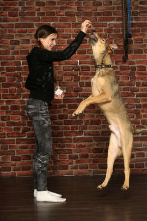 teen girl playing with a dog photo