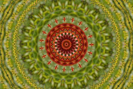 red green circular pattern Stock Photo - 16443621