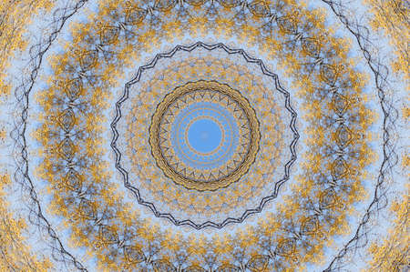 blue with brown circular pattern photo