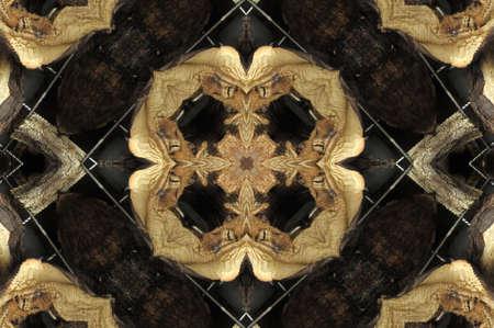 rug map: Oriental  decoration