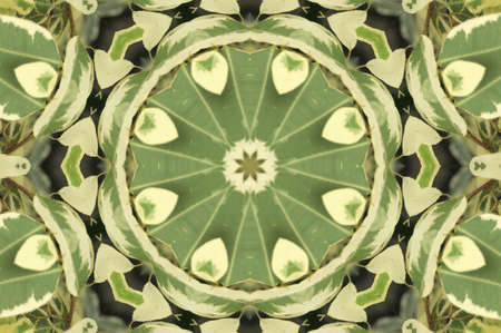 greenish: green leaves ornament