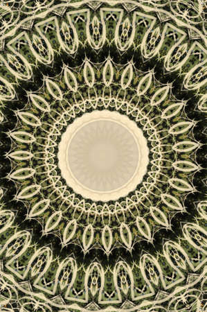 green circular pattern Stock Photo - 17138455
