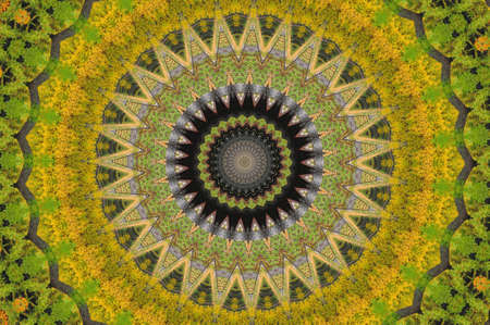 green and yellow pattern photo