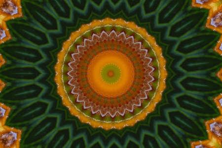 orange with green ornament Stock Photo - 17107482