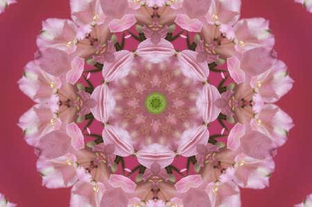 ledger: pink flower pattern Stock Photo
