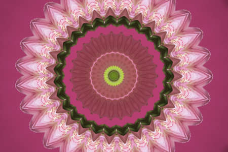 pink flower pattern photo