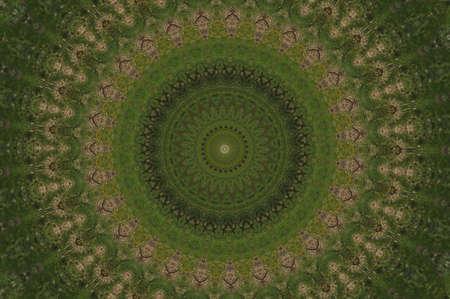 緑の円形のパターン 写真素材
