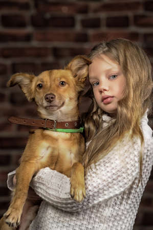 girl with red puppy hugs Stock Photo - 17787487