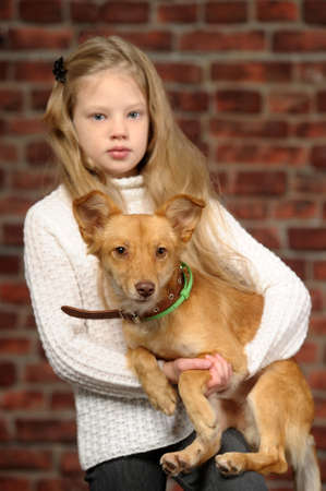 girl with red puppy  Stock Photo - 17787542