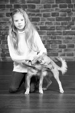 girl with red puppy Stock Photo - 17787546