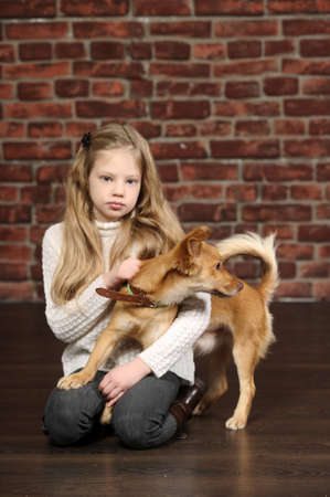 girl with red puppy  Stock Photo - 17787486