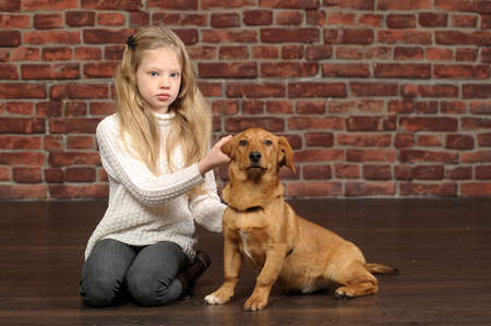 girl with red puppy  Stock Photo - 17787483