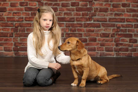 girl with red puppy  Stock Photo - 17787545