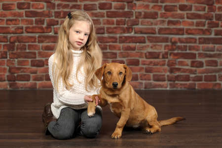 girl with red puppy  Stock Photo - 17787485